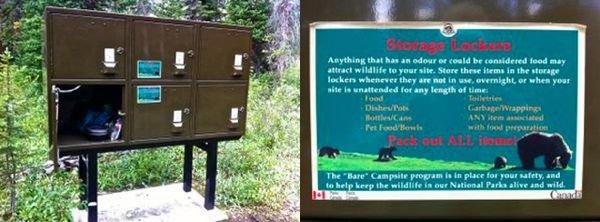 Se protegendo de ursos nas Rochosas Canadenses