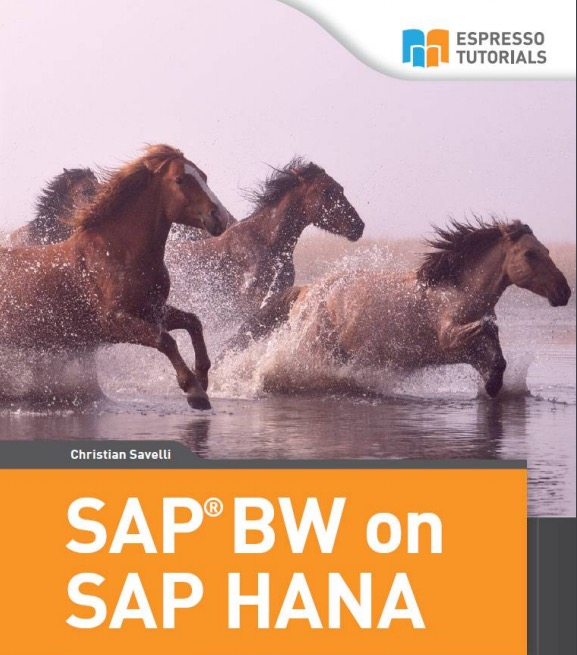 SAP BW on SAP HANA by Christian Savelli
